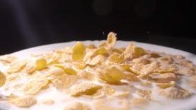 Os flocos de milho amarelos caem em uma placa branca com um teste padrão das flores na borda e são enchidos com o leite closeup filme