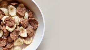 Os flocos de milho da baunilha e do chocolate mergulharam no leite de chocolate em uma bacia branca no fundo claro fotos de stock