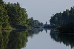 Os fluxos azuis do rio ao horizonte, nos bancos do rio crescem árvores altas foto de stock royalty free