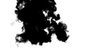 Os fluxos de tinta preta em mover-se branco no movimento lento, na tinta ou no fumo injetam Enegreça na água para o fundo manchad ilustração do vetor