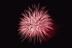 Os fogos-de-artifício abstraem no fundo escuro Fotos de Stock Royalty Free