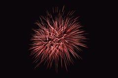 Os fogos-de-artifício abstraem no fundo escuro Imagens de Stock Royalty Free