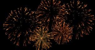 Os fogos-de-artifício abstratos dourados da celebração da faísca piscar iluminam-se no fundo preto, ano novo feliz festivo Fotografia de Stock Royalty Free