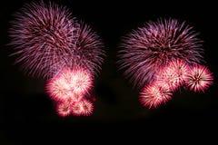 Os fogos-de-artifício abstratos iluminam-se acima no céu na noite Fotos de Stock Royalty Free