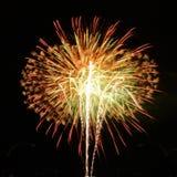 Os fogos-de-artifício bonitos comemoram dentro o isolado do dia no fundo preto Imagens de Stock