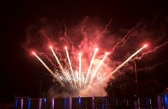Os fogos-de-artifício coloridos surpreendentes em um céu noturno enegrecem o fundo Fotos de Stock Royalty Free