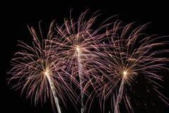 Os fogos-de-artifício iluminam acima o céu Imagem de Stock Royalty Free
