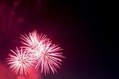 Os fogos-de-artifício iluminam acima o céu com exposição do brilho Fotografia de Stock Royalty Free
