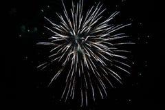 Os fogos-de-artifício indicam durante o evento da noite imagem de stock