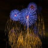 Os fogos-de-artifício indicam no fundo escuro do céu Foto de Stock Royalty Free