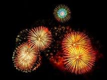 Os fogos-de-artifício indicam no fundo escuro do céu Fotografia de Stock Royalty Free