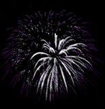 Os fogos-de-artifício isolaram-se Fotografia de Stock Royalty Free