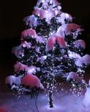 Os fogos de brilho do abeto coberto de neve da beleza do ` s do ano novo fotos de stock