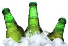Os frascos da cerveja estão no gelo Fotos de Stock Royalty Free