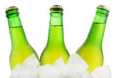 Os frascos da cerveja estão no gelo Foto de Stock