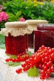 Os frascos da passa de Corinto vermelha caseiro atolam com frutas frescas Fotografia de Stock Royalty Free