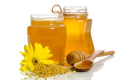 Os frascos do mel perto de uma pilha do pólen e da flor Imagem de Stock Royalty Free