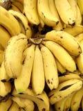 Os frutos ajuntam-se das bananas foto de stock