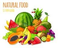 Os frutos ajustaram a vida imóvel ilustração do vetor