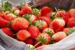 Os frutos frescos da morango preparam-se na caixa enviando ao cliente Fotos de Stock