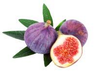 Os frutos frescos do figo isolados no plano branco colocam o close up Foto de Stock