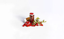 Os frutos maduros selvagens aumentaram com garrafas pequenas Fotografia de Stock