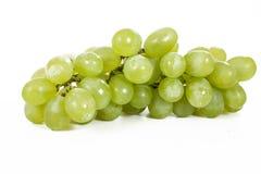 Os frutos saudáveis esverdeiam uvas para vinho com fundo branco Uvas grandes Unwashed do verde do vinho no fundo branco Fotos de Stock