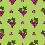 Os frutos sem emenda vector o teste padrão, o fundo brilhante da cor com uvas e as folhas, sobre o contexto verde Imagens de Stock