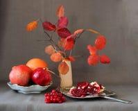 Os frutos vermelhos, bagas, romã dividiram-se em partes e em folhas de outono em um vaso imagens de stock