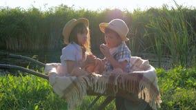 Os gêmeos comem maçãs no carrinho de mão com uma manta na natureza no fundo do por do sol vídeos de arquivo