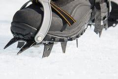 Os ganchos de ferro mordem na neve dura Equipamento de escalada Imagens de Stock Royalty Free