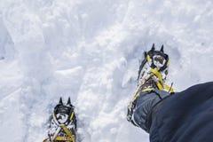 Os ganchos de ferro mordem na neve dura Equipamento de escalada Fotografia de Stock Royalty Free