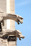 Os Gargoyles de Notre Dame foto de stock royalty free