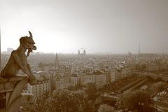 Os Gargoyles de Notre Dame Fotos de Stock