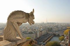 Os Gargoyles de Notre Dame Imagens de Stock