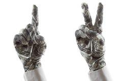 Os gestos de mão mostram o sentido ou a vitória Imagens de Stock