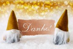 Os gnomos dourados com cartão, meios de Danke agradecem-lhe Imagem de Stock