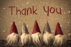 Os gnomos, flocos de neve, texto agradecem-lhe Foto de Stock Royalty Free