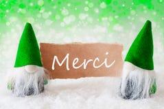 Os gnomos naturais verdes com cartão, meios de Merci agradecem-lhe Fotografia de Stock Royalty Free