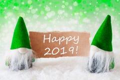 Os gnomos naturais verdes com cartão, Text 2019 feliz fotografia de stock