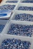 Os grânulos orientais nacionais na forma dos gatos são exibidos para a venda em umas caixas plásticas foto de stock