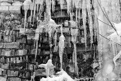 Os grandes sincelos abstraem o fundo velho da parede de tijolo com gelo, musgo, e ramos dos arbustos, tom preto e branco da quebr fotos de stock royalty free