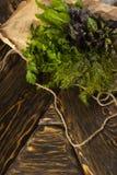 Os grupos de ervas frescas da salsa, do aneto, da manjericão e da azeda encontram-se sobre Foto de Stock Royalty Free