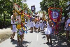 Os grupos de Rio Carnival desfilaram através da cidade e advertem sobre riscos do vírus de Zika imagens de stock royalty free