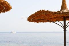Os guarda-sóis naturais da palha bonita sob a forma dos chapéus e das palmeiras verdes em um deserto tropical recorrem contra o s imagem de stock