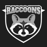 Os guaxinins dirigem o logotipo para o clube ou a equipe de esporte Logotype animal da mascote molde Ilustração do vetor Foto de Stock Royalty Free