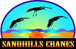 Guindastes de Sandhills Imagens de Stock Royalty Free