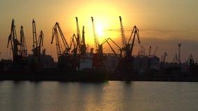 Os guindastes no porto iluminaram o sol da noite Imagem de Stock Royalty Free
