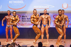 Os halterofilistas masculinos dobram seus músculos e mostram seu melhor physiqu Imagem de Stock Royalty Free