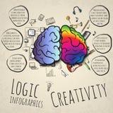 Os hemisférios esquerdos e direitos do cérebro Imagens de Stock